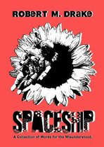 Afbeelding van Spaceship