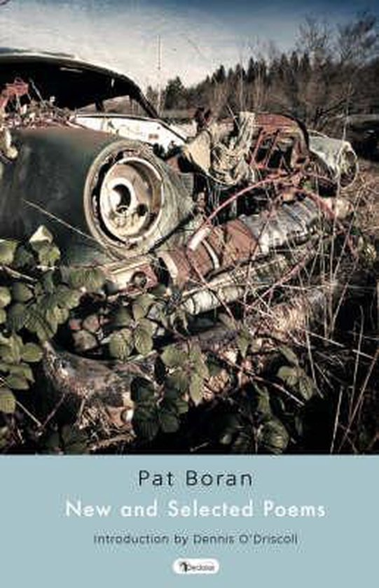 Boek cover New and Selected Poems van Pat Boran (Hardcover)