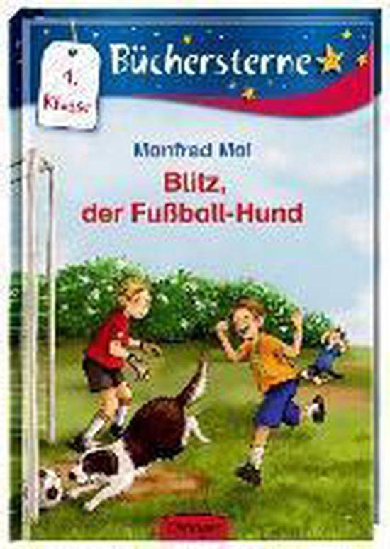 Omslag van Blitz, der Fußball-Hund