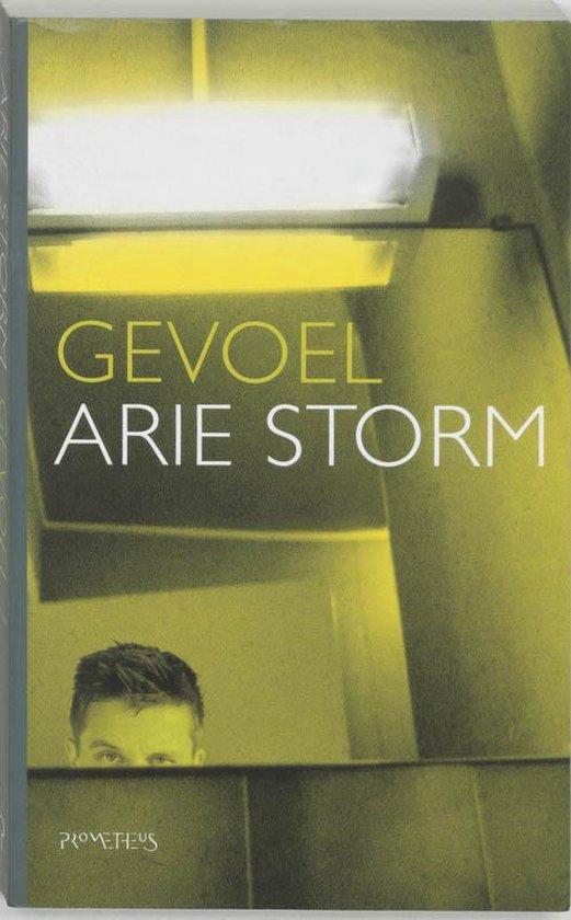 Gevoel - Arie Storm pdf epub