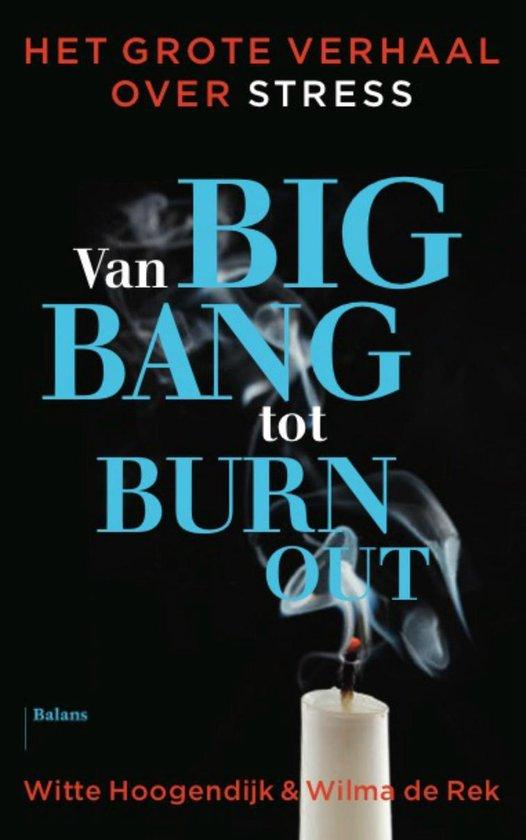 Van big bang tot burn-out - Witte Hoogendijk |