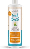 Oxyfresh Power Rinse Mondwater - Lemon-Mint - 473 ml