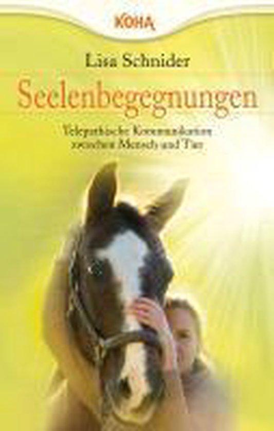 Boek cover Seelenbegegnungen van Lisa Schnider (Paperback)