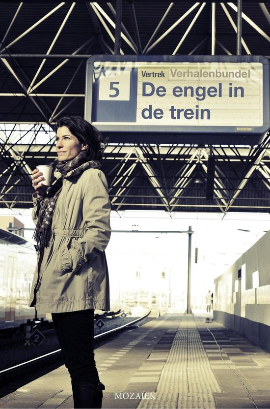 De engel in de trein - Mark-Jan Zwart pdf epub
