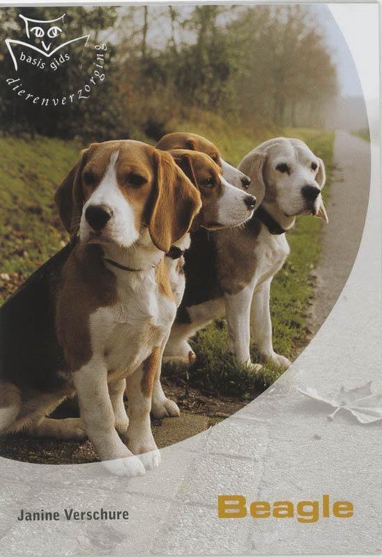 De Beagle - J. Verschure |