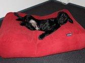 Dog's Companion hondenkussen - XS - 55 x 45 cm - steenrood ribcord