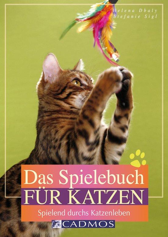Das Spielebuch für Katzen