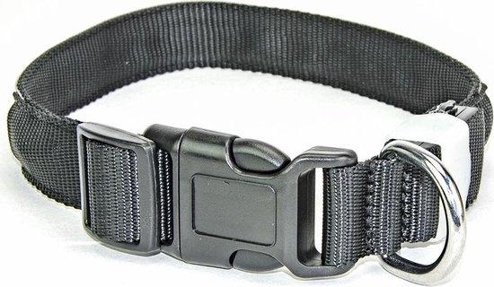 LED Halsband Waterproof Multicolor 50-60cm PX1+M Hilox