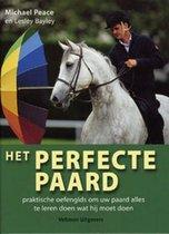 Het perfecte paard