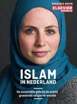 Islam in Nederland