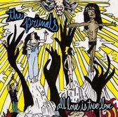All Love Is True Love (LP)