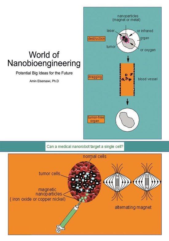 World of Nanobioengineering