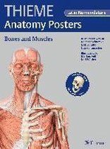 Thieme Anatomy Poster, Latin Nomenclature
