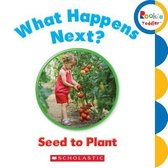 What Happens Next? Seed to Plant (Rookie Toddler)