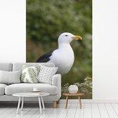 Fotobehang vinyl - Een mooie grote mantelmeeuw in een volbloeide natuur breedte 180 cm x hoogte 270 cm - Foto print op behang (in 7 formaten beschikbaar)