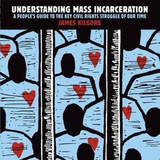 Afbeelding van Understanding Mass Incarceration
