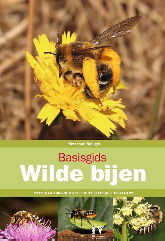 Basisgids Wilde bijen - Pieter van Breugel |