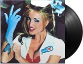 Enema of the State (LP)