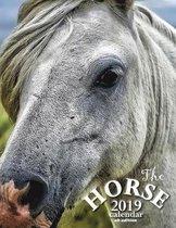 The Horse 2019 Calendar (UK Edition)