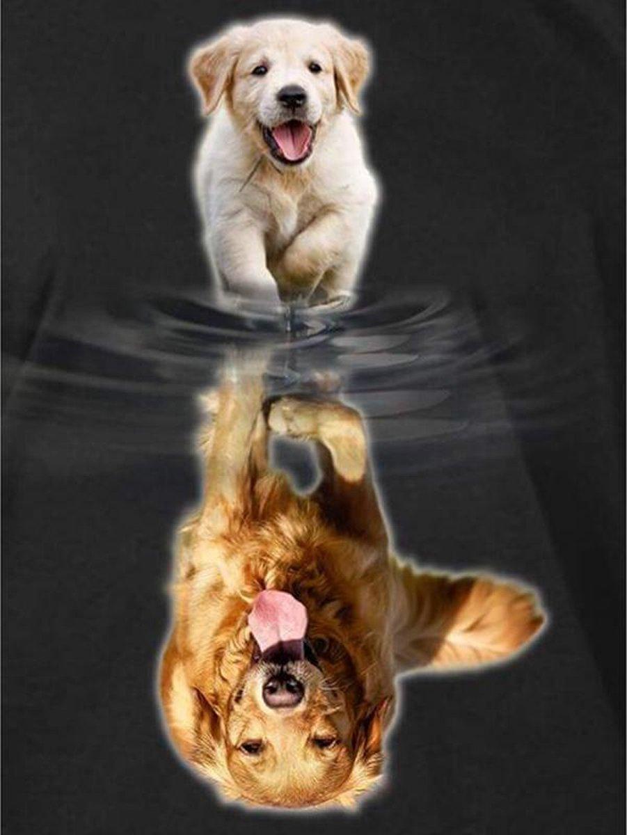 Diamond Painting Pakket Labrador van Pup naar Volwassen - FULL - Diamond Paintings - 25x30 cm - SEOS Shop ®