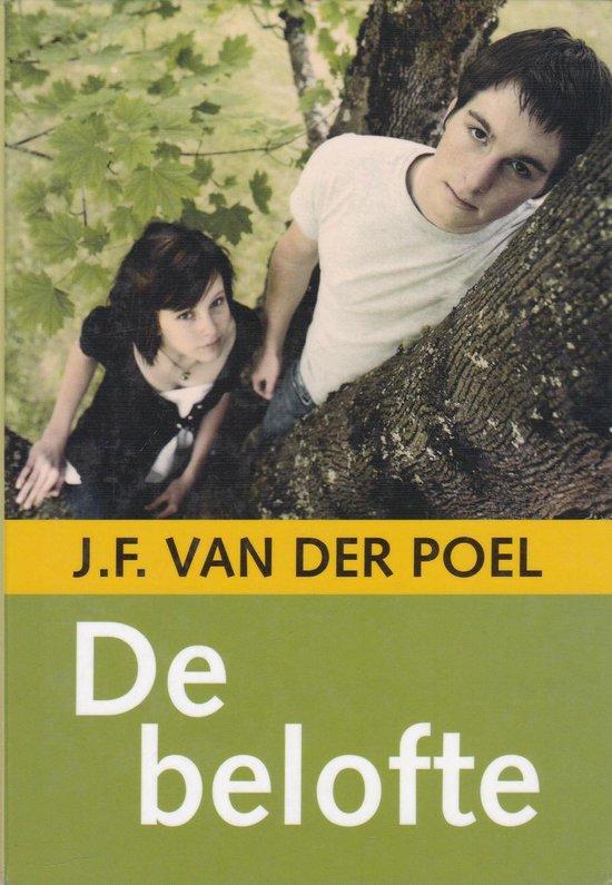 Grote letter bibliotheek 2471 - De belofte - J.F. van der Poel |