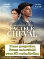 L'Incroyable histoire du facteur Cheval [DVD]