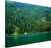 Dennenbossen in het Nationaal park Durmitor in Montenegro Canvas 90x60 cm - Foto print op Canvas schilderij (Wanddecoratie woonkamer / slaapkamer)