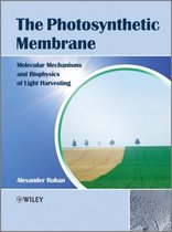 The Photosynthetic Membrane