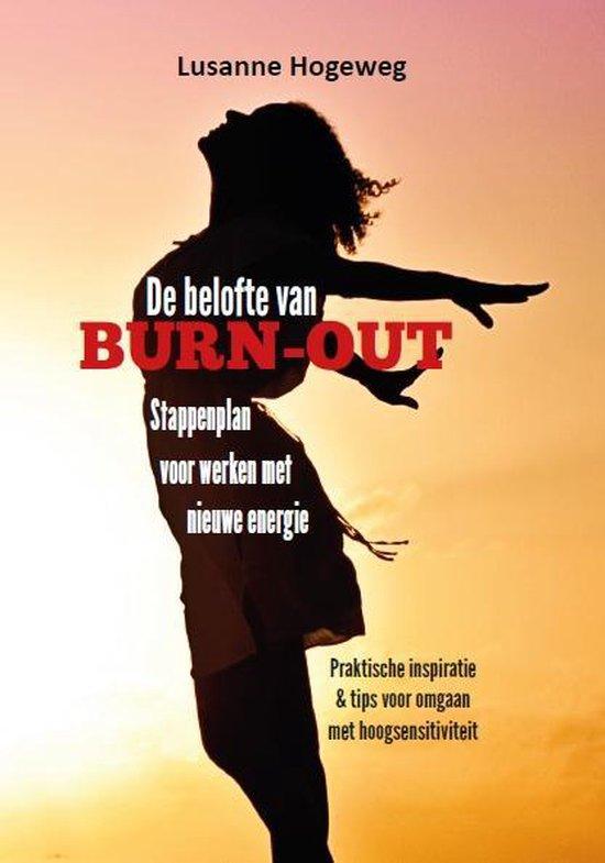 De belofte van burn-out - Lusanne Hogeweg  