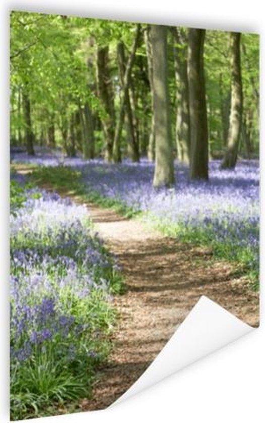 Klokjes die in het bos groeien Poster 120x180 cm - Foto print op Poster (wanddecoratie woonkamer / slaapkamer) XXL / Groot formaat!