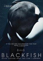 Movie/Documentary - Blackfish