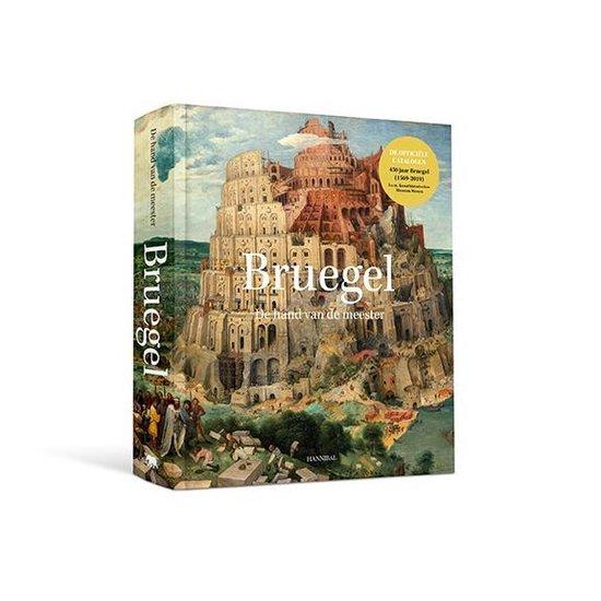 Bruegel, de hand van de meester - Manfred Sellink |