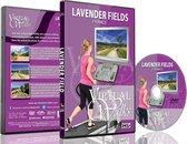 Virtuele wandelingen - Lavendelvelden Provence, Frankrijk