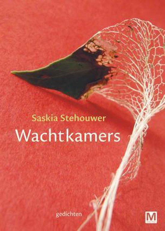 Wachtkamers - Saskia Stehouwer |