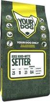 Yourdog ierse rood-witte setter hondenvoer senior 3 kg