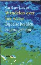 Wandelen over het water