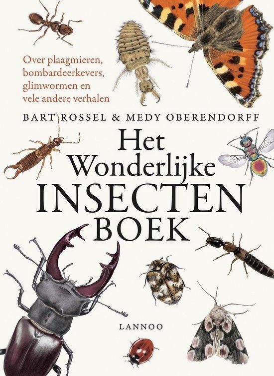 Afbeelding van Terra Lannoo Het wonderlijke insectenboek. 8+ speelgoed