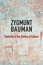 Boek cover Sketches in the Theory of Culture van Zygmunt Bauman (Onbekend)
