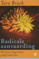 Radicale Aanvaarding