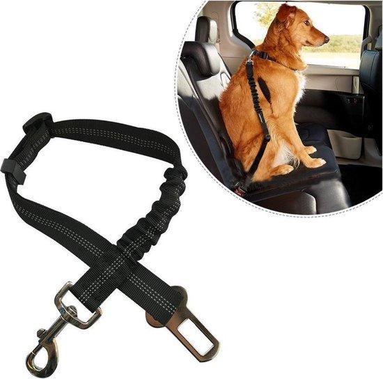 Honden - Autogordel - Veiligheidsgordel - Blauw - veiligheid - Auto - Huisdier