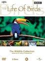 Bbc: The Life Of Birds (D)