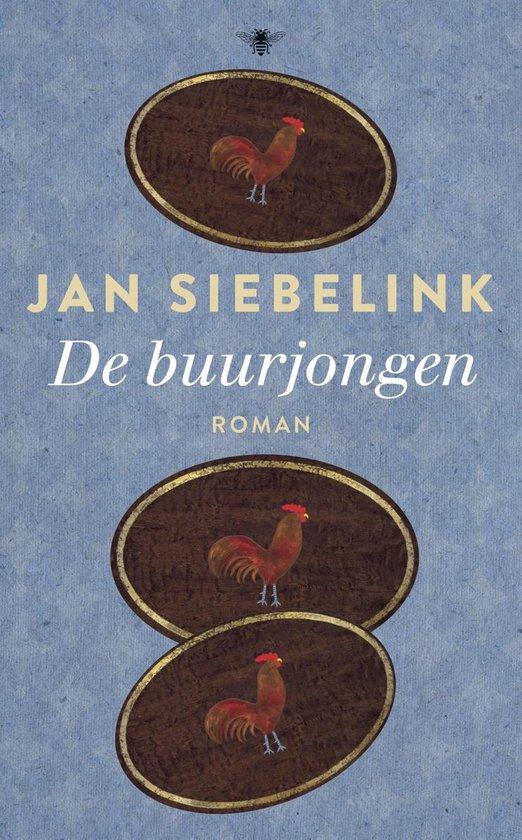 De buurjongen - Jan Siebelink |