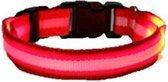 LED hondenhalsband - Rood - S