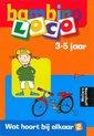 Afbeelding van het spelletje Loco Bambino Waar hoort het bij? 3 - 5 jaar
