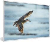 Foto in lijst - Een regenwulp vliegt over de stille oceaan fotolijst wit 60x40 cm - Poster in lijst (Wanddecoratie woonkamer / slaapkamer)