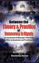 Between the Theory and Practice of Democracy in Nigeria