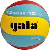 Gala Volleybal licht jongvolwassenen volleybal.