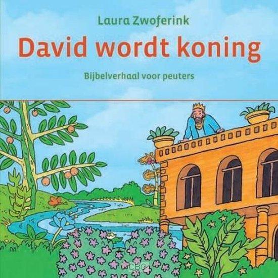 David wordt koning - Zwoferink, Laura pdf epub