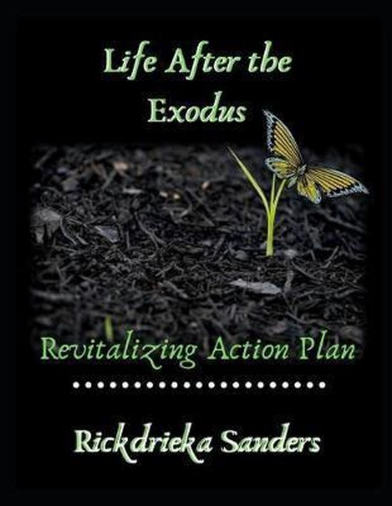 Life After the Exodus: Revitalizing Action Plan