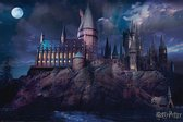 Harry Potter Hogwarts Poster 61x91.5cm